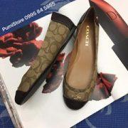 Coach Chelsea leather Khaki chesnut